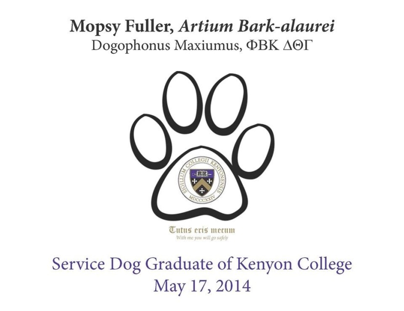 "Mopsy's diploma from Kenyon College. It shows a paw print with the seal of Kenyon College in the paw. It reads: Mopsy Fuller Service dog diploma from Kenyon College, Artium Bark-alaurei, dogophonus maximus. It also bears the motto, in Latin and English, ""with me you will go safely."""